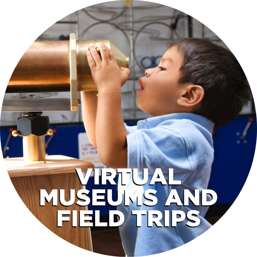 Virtual museums and field trips